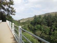 Blick auf den botanischen Garten von der Brücke aus