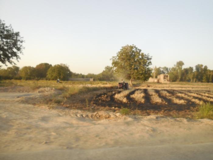 Ein Kleinbauer beackert die letzten verbleibenen Grünflächen