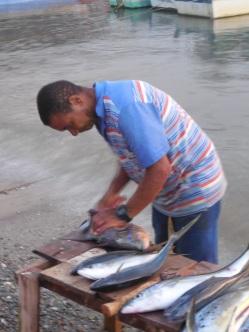 Frischer Fisch yummy